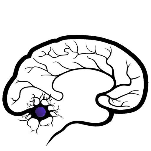 Neurology In The News – FSNeuro